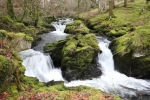 River Teigl near us