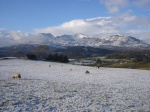 Winter over the Moelwyn