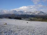 Winter over the Moelwyn