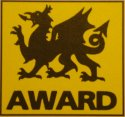 Dragon Award for Excellence
